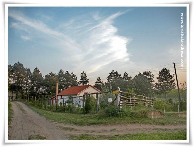 Alibunar - Deliblatska pescara   Serbia, Country roads