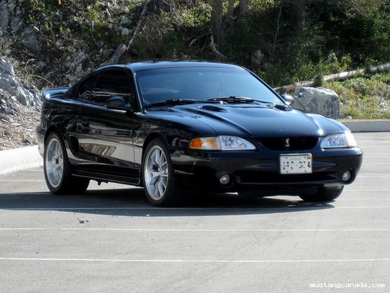 1996 Ford Mustang Cobra Ford Mustang Cobra Mustang Cobra Ford Mustang
