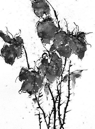 Ink Painting, ink flowers, Fine Art Print, Flower Art ...