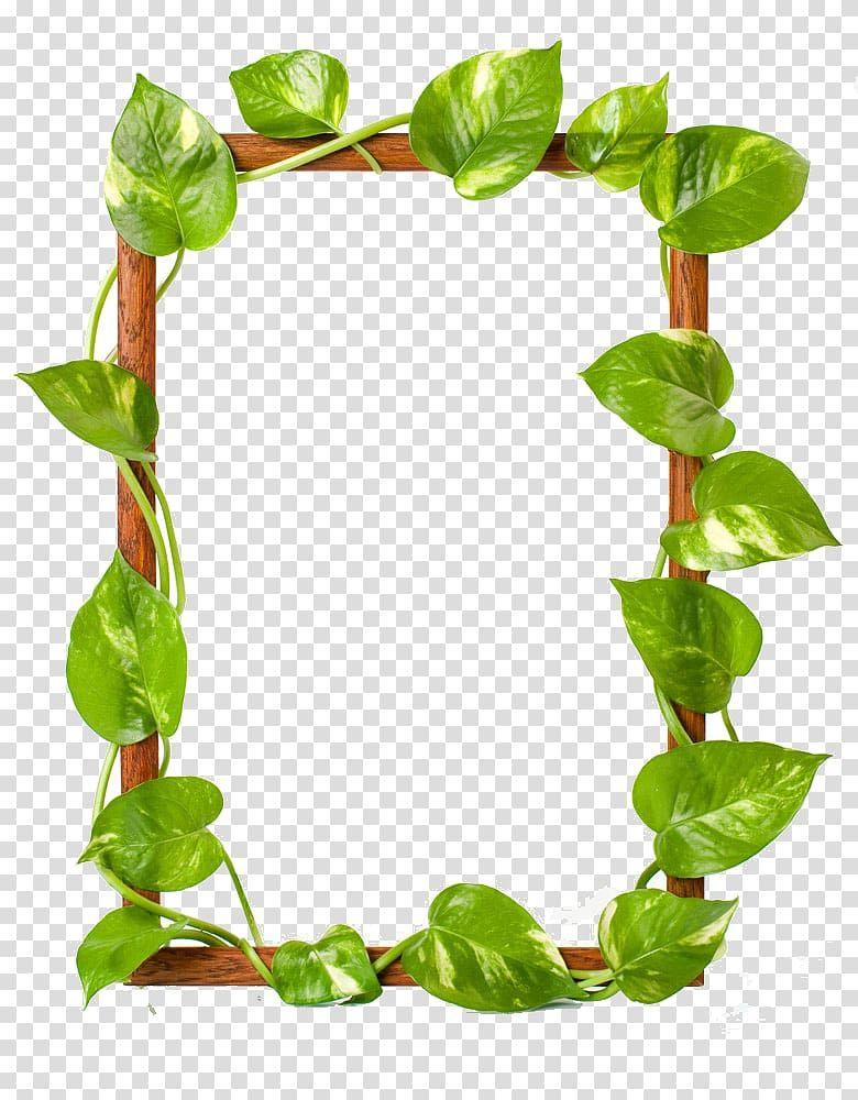 Brown Wooden Frame Green Leaves Frame Raster Graphics Leaf Green Leaves Border Transparent Background Png Cl Flower Illustration Flower Frame Flower Border