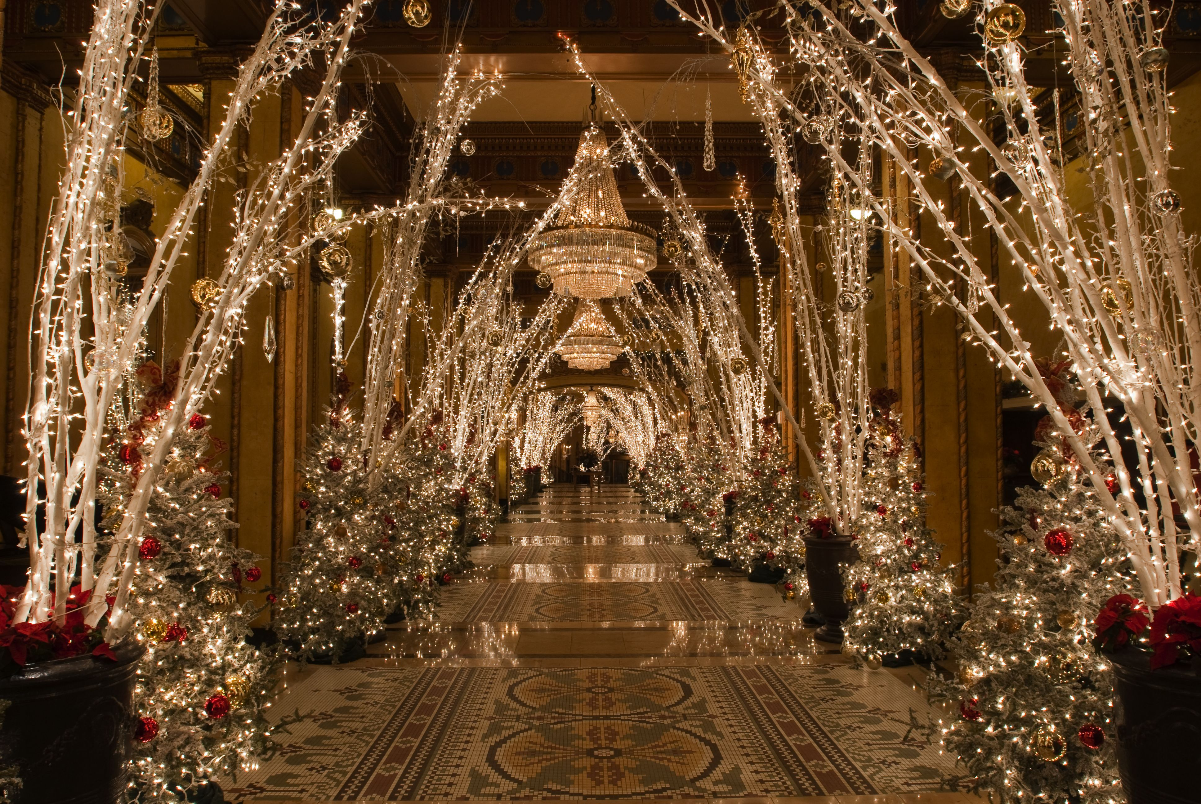 The Roosevelt New Orleans A Waldorf Astoria Hotel Winter