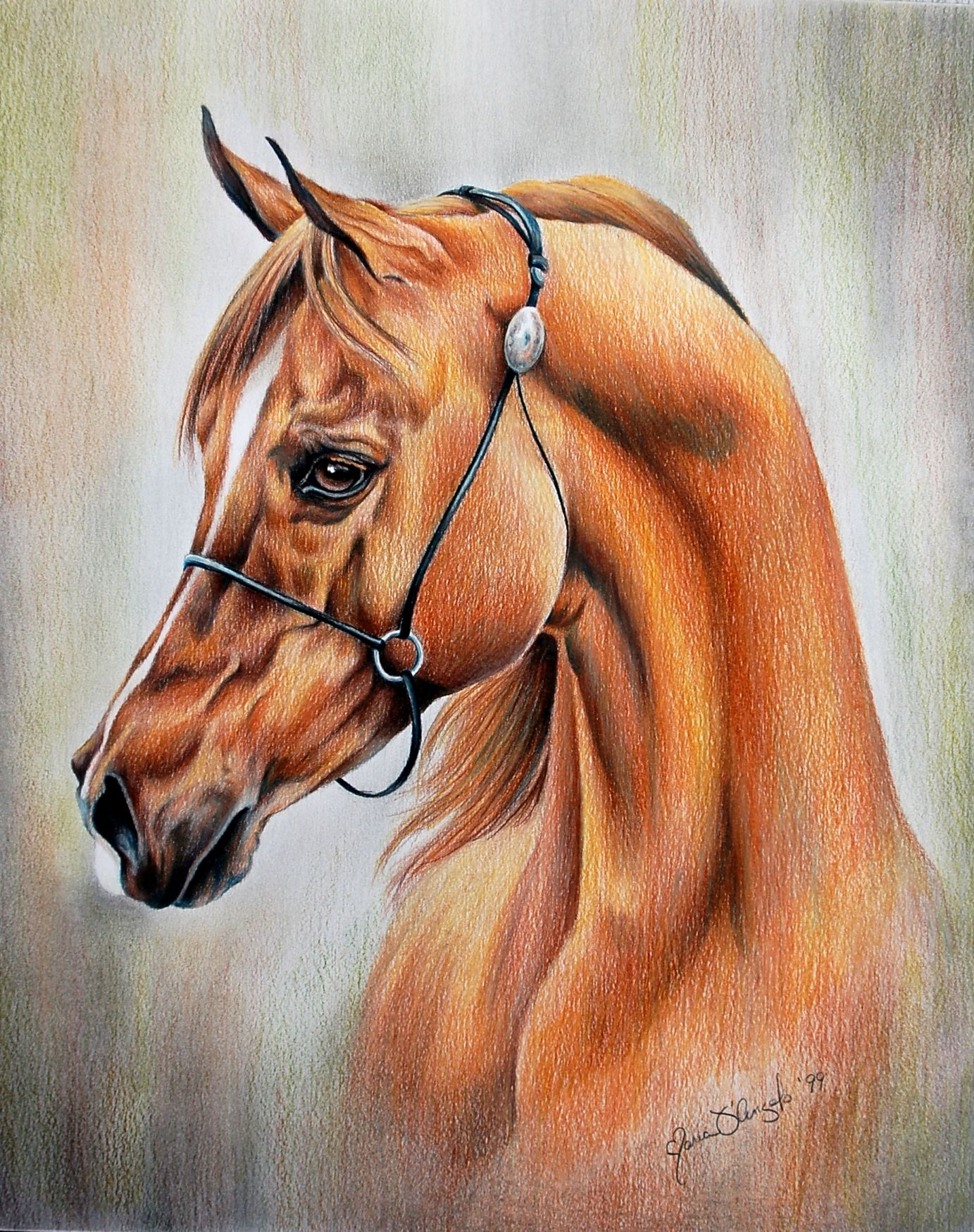Full Body Horse Drawing : horse, drawing, White, Mountain, Womens, Ankle, Strap, Dress, Sandals, Walmart.com, Arabian, Horse, Painting,, Artwork