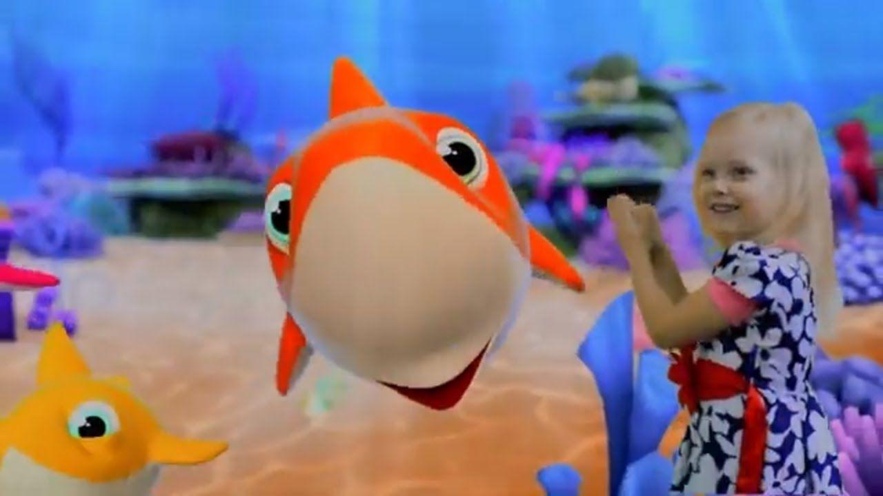 Baby Shark Doo Doo Doo berry sorn baby shark Baby