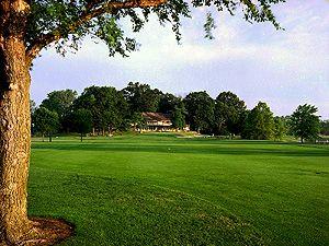 36+ Alwyn downs golf course michigan info