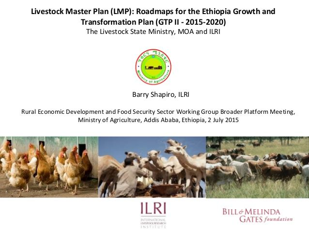Livestock Master Plan (LMP): Roadmaps for the Ethiopia