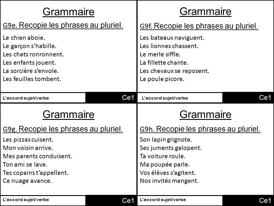 Image Result For Mettre Des Phrases Au Pluriel Phrase Grammaire Pluriel