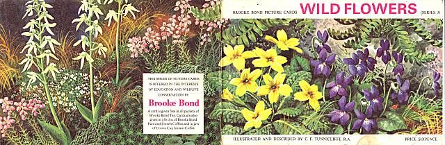 Wild Flowers Series 3 Brooke Bond PG Tips Tea Cards 1964