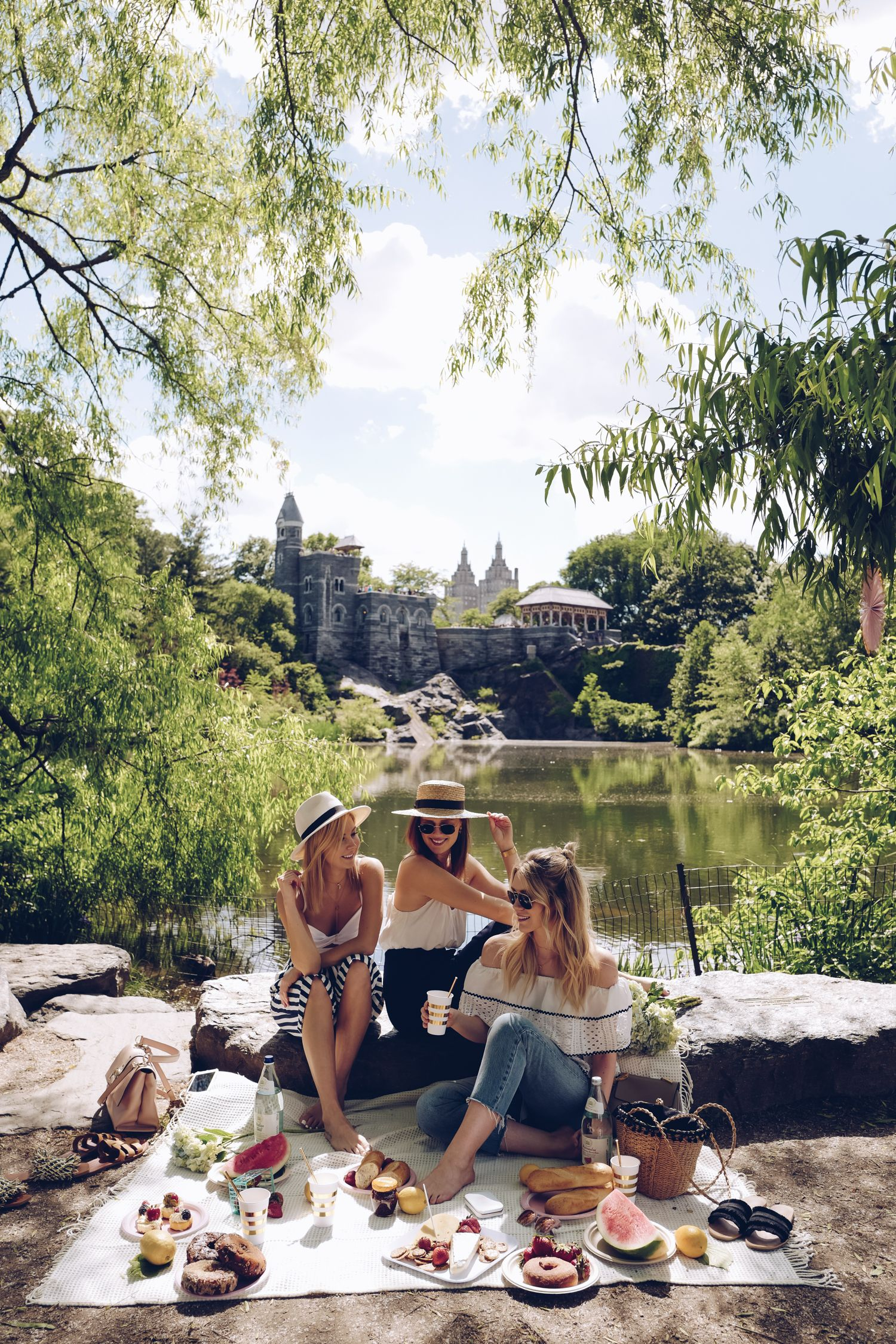 PICNIC IN CENTRAL PARK - PICNIC SET UP & STYLING - Winston ...