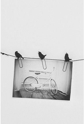 Great way to display photos at work without nailing (drilling) into the wall - Birds on a Wire photo clips from Urban Outfitters