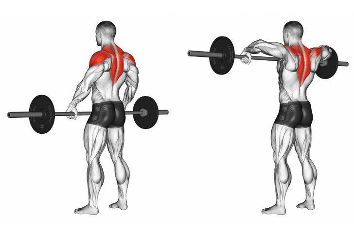 11+ 11 Shoulder Exercises That Would Make Arnold Schwarzenegger Proud of You