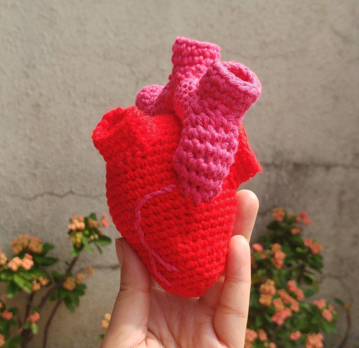 Amigurumi Anatomical Heart (Pattern used http ...
