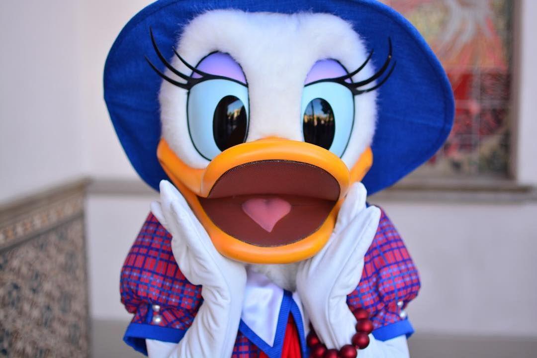 足利今から東京帰るよ #donald #ドナルド #ドナ #donalddack #daisy #デイジー  #DLR #disneyland  #disney  #disneygram #disney部  #disneycharacter  #disney写真部  #disneylove #disneyfun #DCA #disneyland60 #ディズニー #アナハイム #disneyCaliforniaadventure by stitchliloyoume