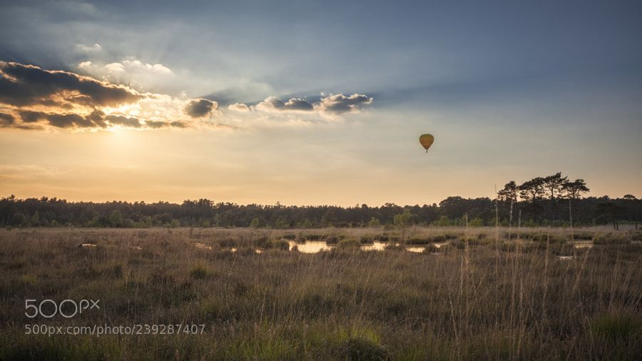 The golden Hour of Ballooning by antonycooperba #Landscapes #Landscapephotography #Nature #Travel #photography #pictureoftheday #photooftheday #photooftheweek #trending #trendingnow #picoftheday #picoftheweek