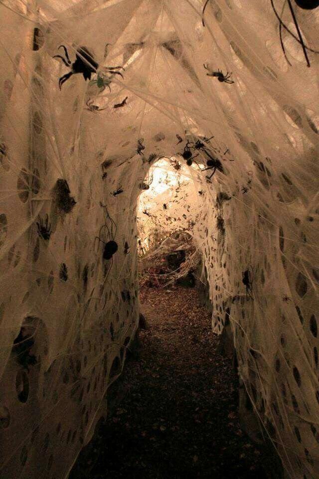 Spider Tunnel \u2026 Pinteres\u2026 - scary diy halloween decorations