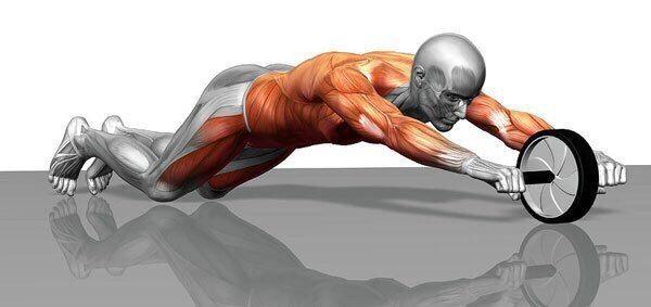 Roller press: 5 best exercises for maximum effect | Ab wheel workout, Roller  workout, Ab roller workout