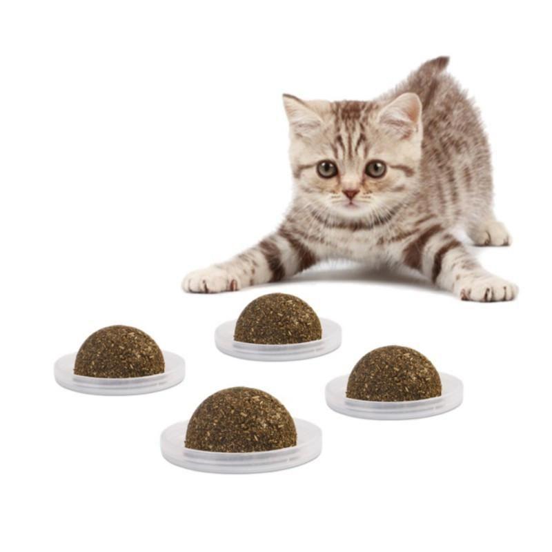 Catnip Treat Ball For Cats Edible Treating Pets Petshop Petstore Petsmart Petaccessories Petaccessoriesstore Cutec With Images Catnip Treats Cat Snacks Healthy Cat