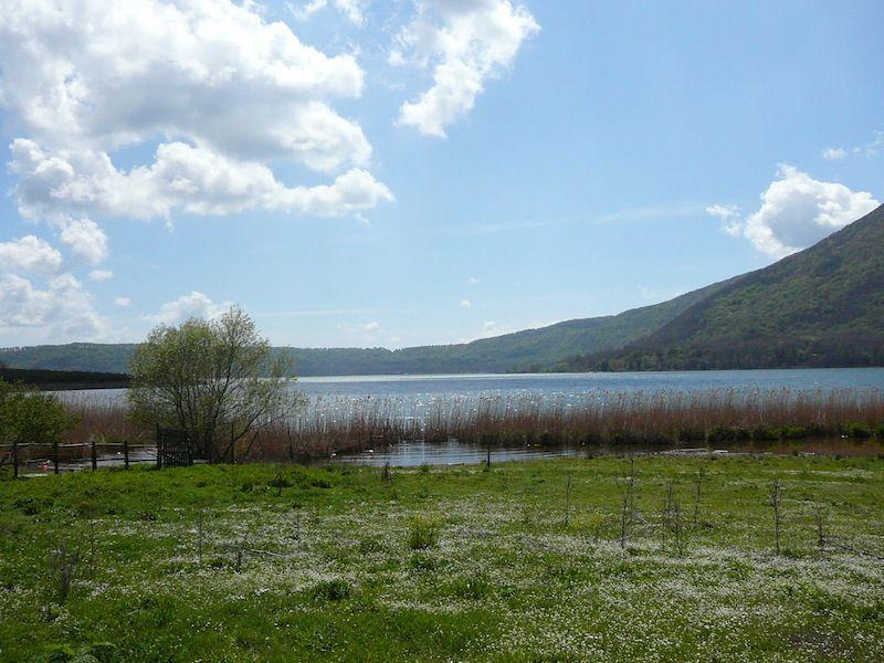 albergo la bella venere lago di vico - Google Search