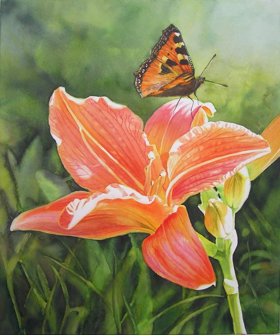 Watercolor Flower Painting - Orange Daylily with Butterfly ...