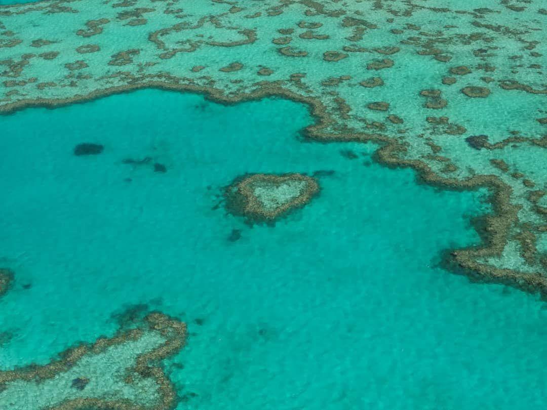 heart reef greatbarrierreefheartsreefreefaustraliawitsundayislandshelicopterflight