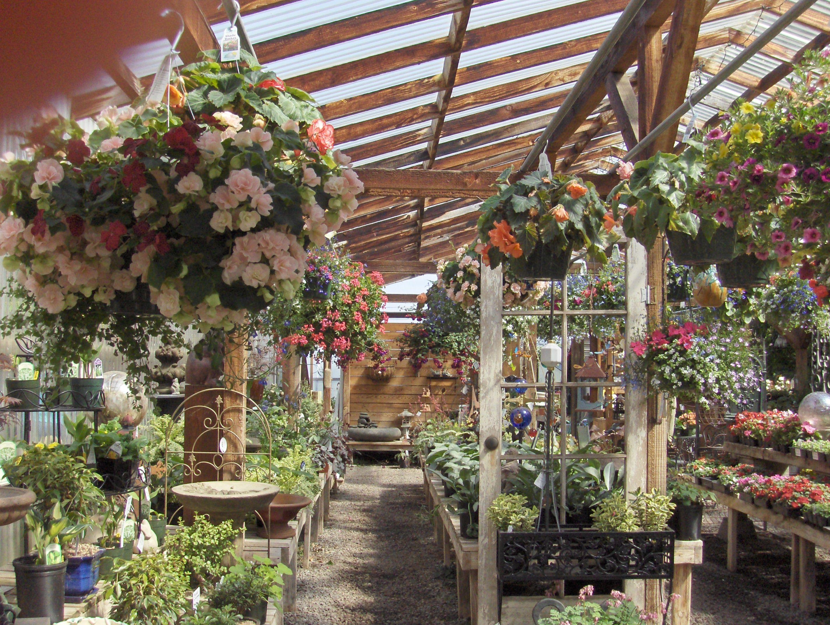 Garden Center   Dreaming of a Garden Center...   Pinterest   Gardens ...