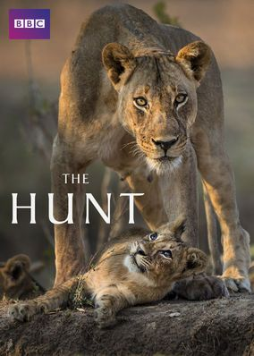 The Hunt (2015) - Witness some of the most riveting showdowns in the animal kingdom as cameras capture leopards, polar bears and other predators targeting their prey.