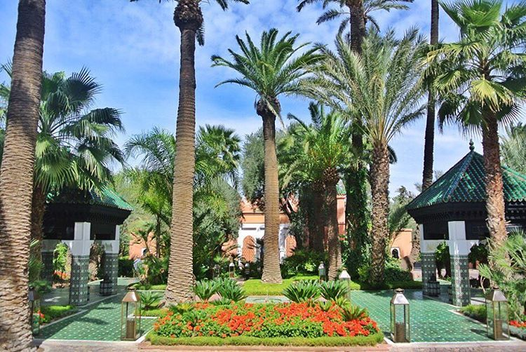«La Mamounia em #Marrakech, um dos hotéis mais completos que já ficamos no mundo! ➡️No www.voali.com.br, muitos posts sobre o #Marrocos #linknabio…»