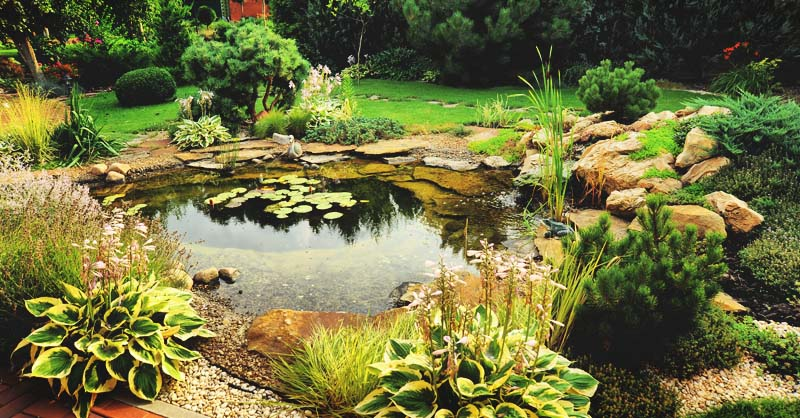 How to Build a Beautiful Backyard Pond in 11 Steps in 2020 ...