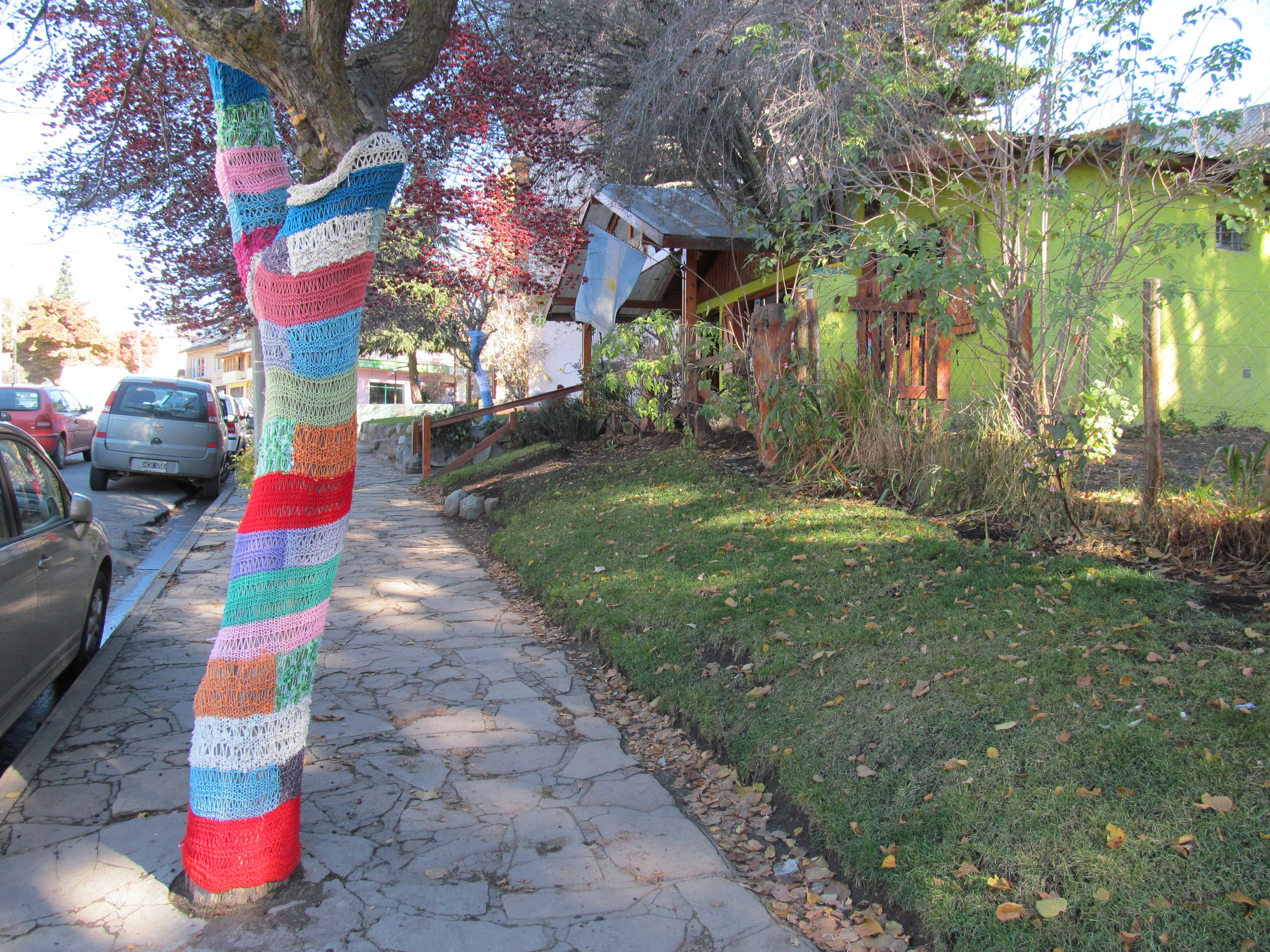 At Bariloche, where even trees wear sweaters.