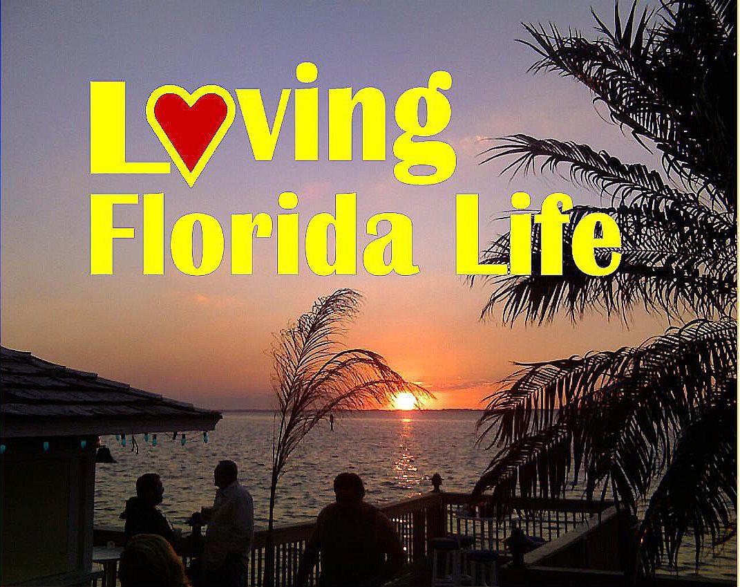Best Of Florida Loving Life In Florida Florida Life Best