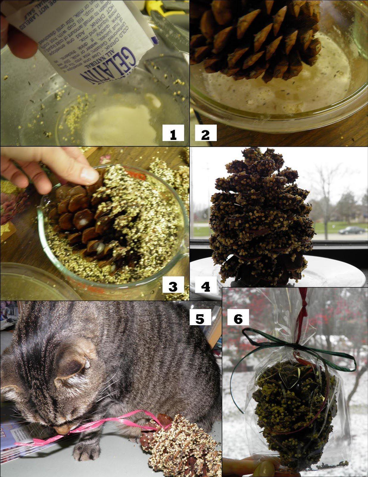 Bird Seed Ornaments Recipe Gelatin