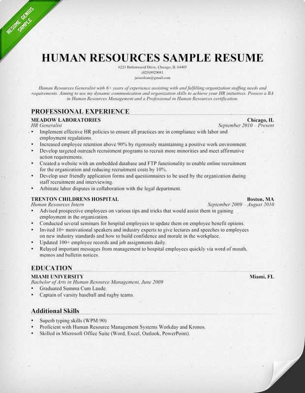 Human Resources Hr Resume Sample  Writing Tips  Friendship