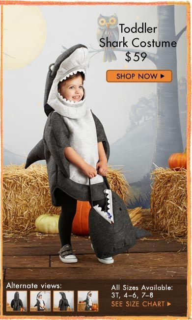 Shark Pottery Barn Toddler Shark Costume Shark Costumes