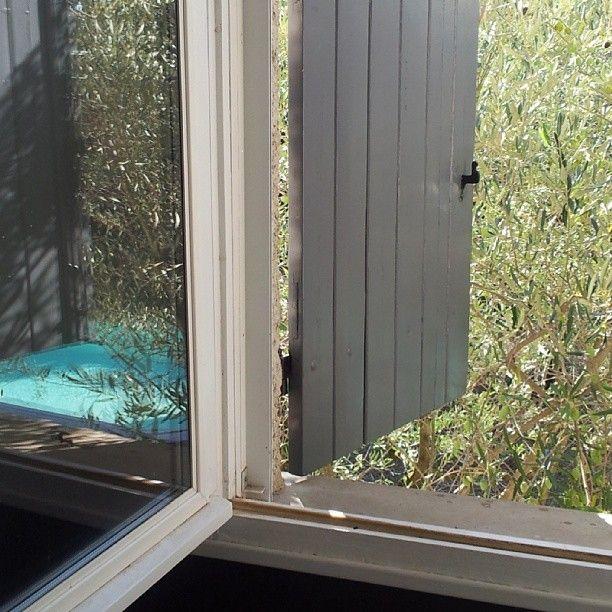 Outside & Inside - the view from savannah's room ...  Instagram photo by @misskickcan (Deborah Beau) | Statigram
