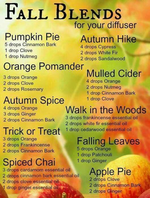 Pumpkin pie, orange pomander, autumn spice, trick or treat, spiced chai, autumn hike, mulled cider,...