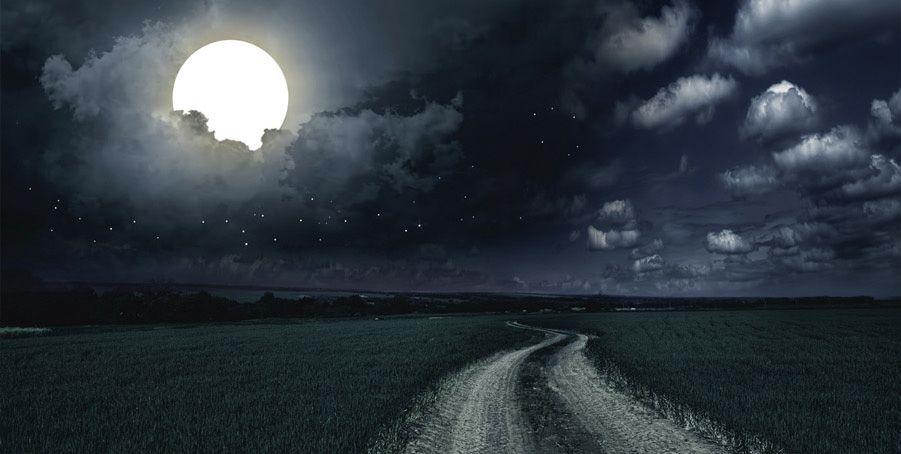 Carta Da Parati Prato.Carta Da Parati Luminosa Con Prato E Luna La Lune Assorbe La Luce