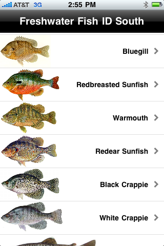 Freshwater Fish Id South Helps You Identify Fish That Live In Freshwater In The Southern Part Of The U S Freshwater Fish Fish Fresh Water