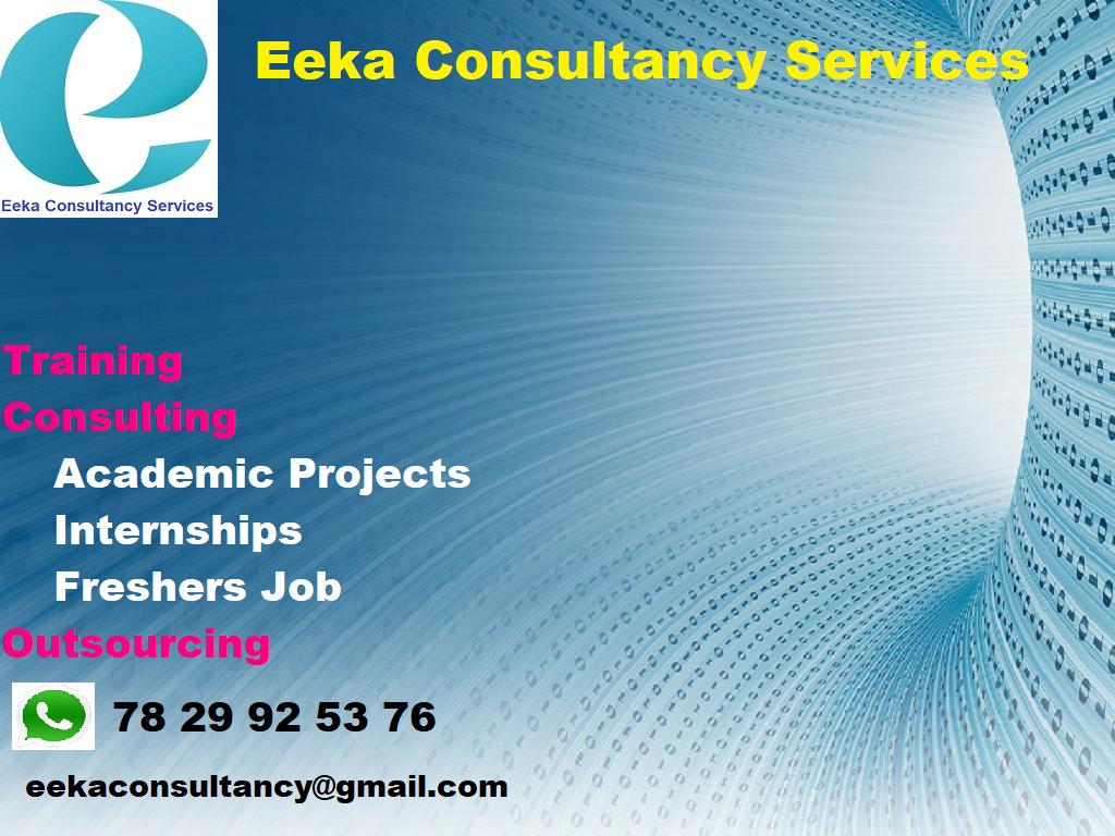 Eeka Consultany Services Service, Job, Internship