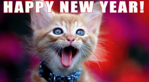 Funny Happy New Year Memes 2021 Happy New Year Song Happy New Year Funny Kittens Cutest Baby