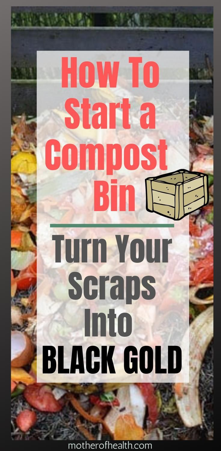 Learn how to start a compost bin instead of buying compost by the bag Commercial gardeners already have their hands full in April Because this month is diligently sown an...