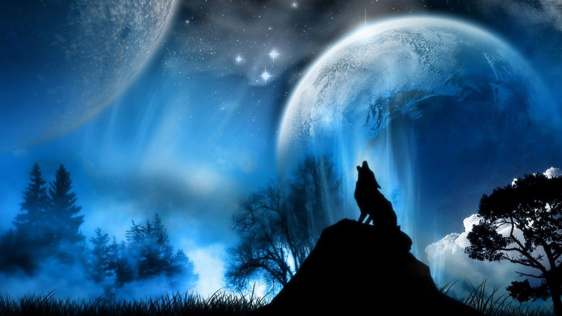 Black Wolf Wallpaper 1920x1080 Jpg 1920 1080 Scenery Wallpaper Wolf Wallpaper Wallpaper Pictures