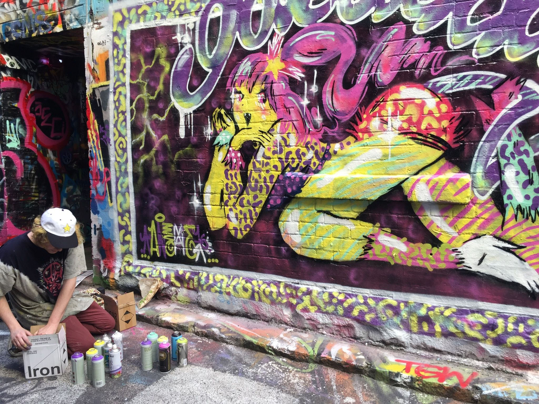 around Melbourne Australia - what a great place to be - travel - enjoy - sightseeing - art -