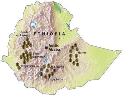 map ethiopia coffee  Google Search  Ethiopia  Pinterest  Gusto