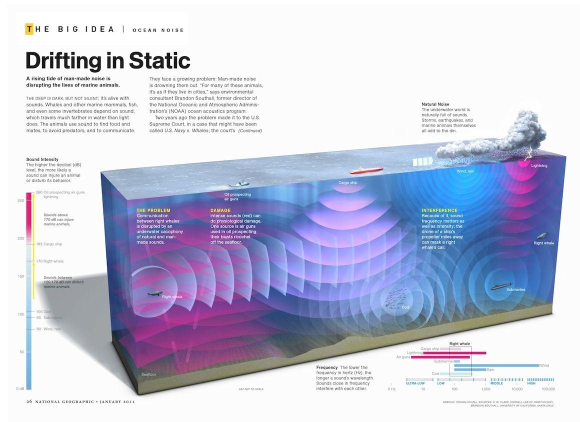 ocean infographics - Google 검색