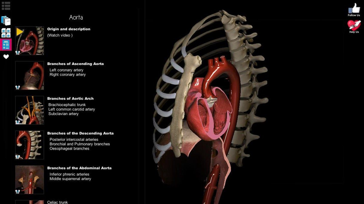 Anatomy Learning - 3D Atlas FULL APK Free Download : -If the app is ...