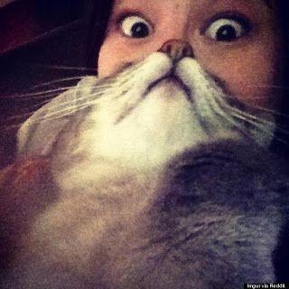 Cat + Woman = Real Life Cat Woman