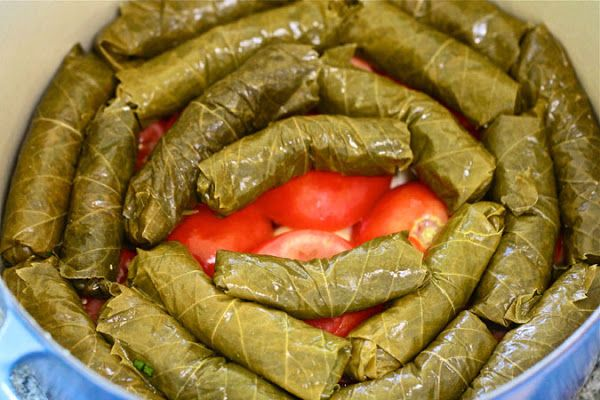 Yebra my version of syrian stuffed grape leaves with lamb my version of syrian stuffed grape leaves with lamb healthy lunch recipes blog forumfinder Gallery