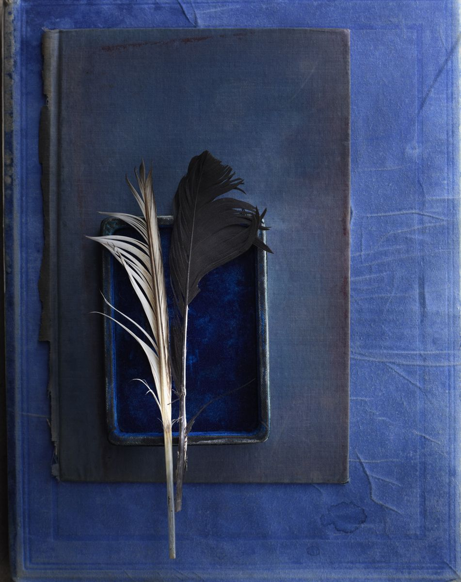 Vintage blue book, box, and black and white feather © Laurie Frankel ...