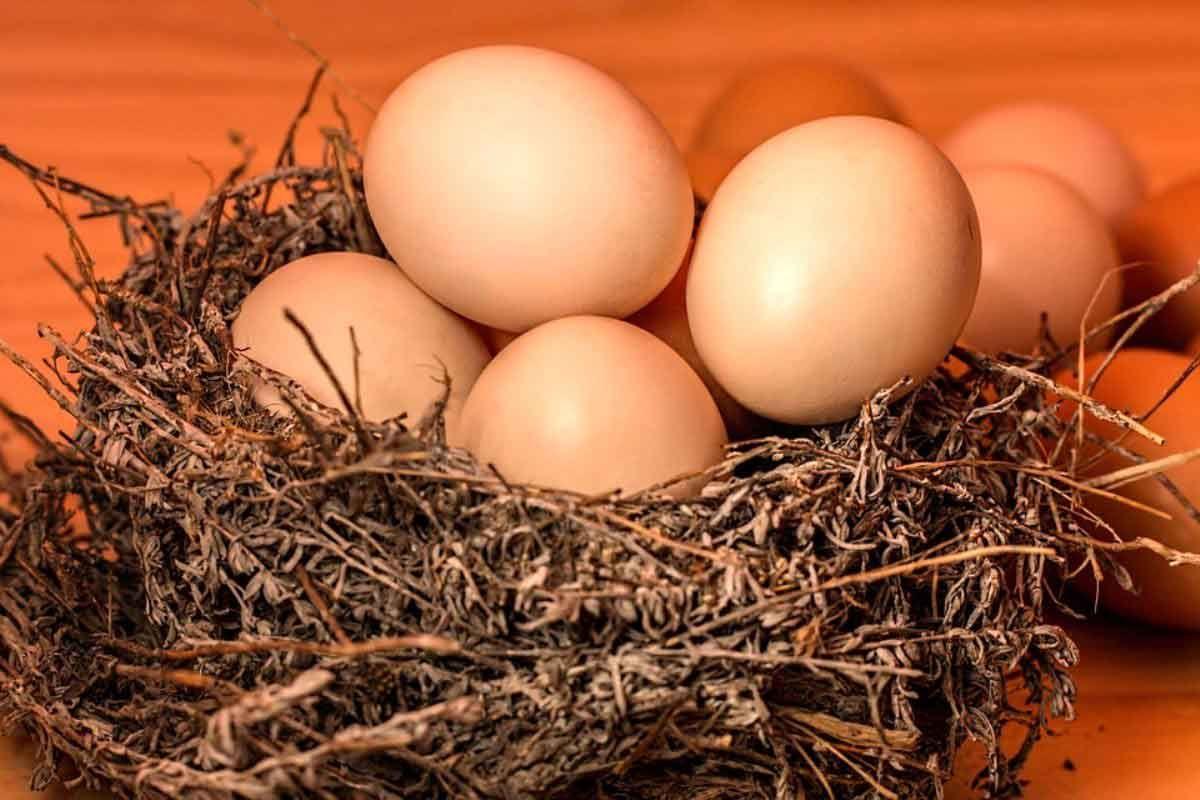 Ruyada 5 Yumurta Gormek Prevent Diabetes Healthy Living Diet Home Remedies For Hair
