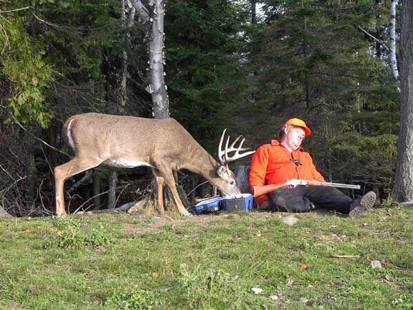 Hunter Hunted -