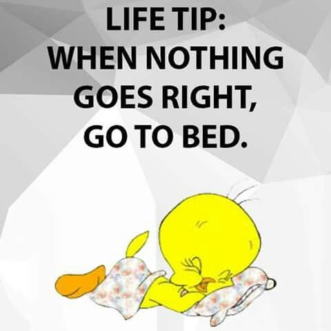 So True Cartoon Quotes Everyday Quotes Funny Quotes